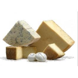 Rulo de queso de cabra